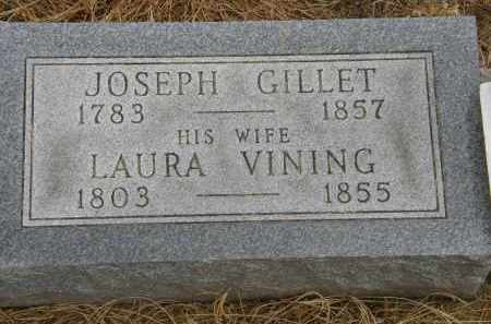 VINING GILLET, LAURA - Marion County, Ohio | LAURA VINING GILLET - Ohio Gravestone Photos