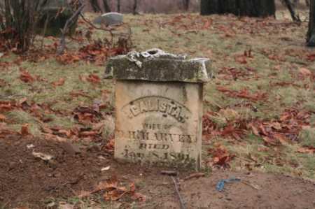 HARVEY, CALISTA - Marion County, Ohio | CALISTA HARVEY - Ohio Gravestone Photos
