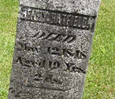 HATFIELD, HENRY - Marion County, Ohio | HENRY HATFIELD - Ohio Gravestone Photos