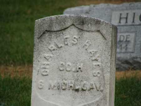 HAYES, CHARLES - Marion County, Ohio | CHARLES HAYES - Ohio Gravestone Photos