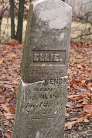 HENRY, ELLIE - Marion County, Ohio | ELLIE HENRY - Ohio Gravestone Photos