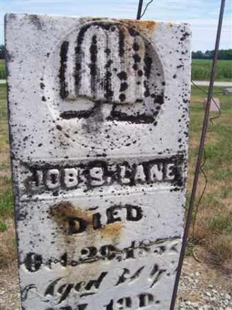 LANE, JOBE S. - Marion County, Ohio | JOBE S. LANE - Ohio Gravestone Photos