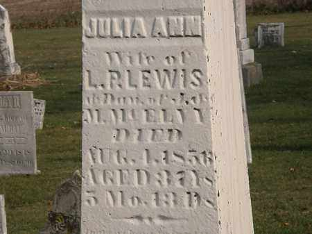 MCELVY LEWIS, JULIA ANN - Marion County, Ohio | JULIA ANN MCELVY LEWIS - Ohio Gravestone Photos
