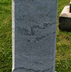 LOWMILLER, MARGARET - Marion County, Ohio | MARGARET LOWMILLER - Ohio Gravestone Photos