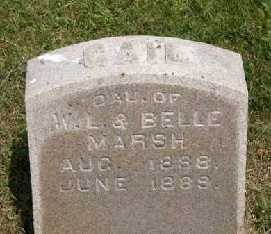 MARSH, W. L. - Marion County, Ohio | W. L. MARSH - Ohio Gravestone Photos