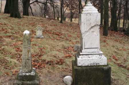 MCWHERTER, MARGARET - Marion County, Ohio   MARGARET MCWHERTER - Ohio Gravestone Photos