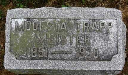 MEISTER, MODESTA - Marion County, Ohio | MODESTA MEISTER - Ohio Gravestone Photos