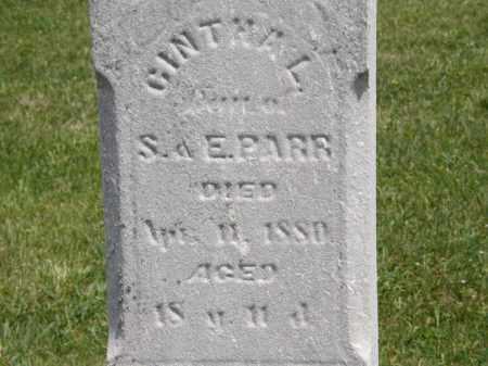 PARR, CINTHIA L. - Marion County, Ohio | CINTHIA L. PARR - Ohio Gravestone Photos