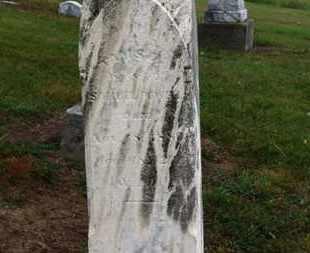 POWELL, TAMSEA - Marion County, Ohio | TAMSEA POWELL - Ohio Gravestone Photos