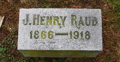 RAUB, J. HENRY - Marion County, Ohio | J. HENRY RAUB - Ohio Gravestone Photos