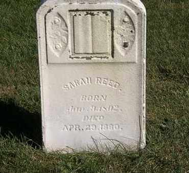 REED, SARAH - Marion County, Ohio | SARAH REED - Ohio Gravestone Photos
