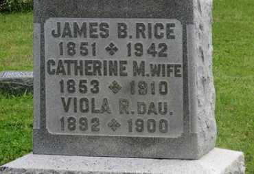 RICE, CATHERINE M. - Marion County, Ohio | CATHERINE M. RICE - Ohio Gravestone Photos