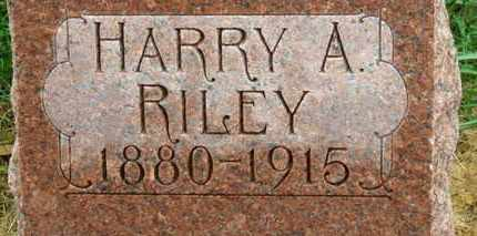 RILEY, HARRY A. - Marion County, Ohio | HARRY A. RILEY - Ohio Gravestone Photos