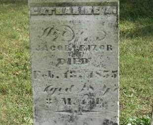 RIZOR, CATHARINE A. - Marion County, Ohio | CATHARINE A. RIZOR - Ohio Gravestone Photos