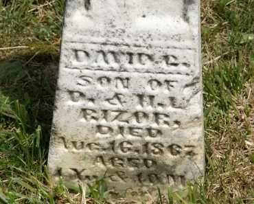 RIZOR, D. - Marion County, Ohio | D. RIZOR - Ohio Gravestone Photos