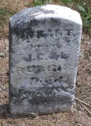 RUBINS, INFANT - Marion County, Ohio | INFANT RUBINS - Ohio Gravestone Photos