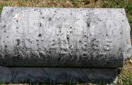 SHAW, JOHN J. - Marion County, Ohio | JOHN J. SHAW - Ohio Gravestone Photos