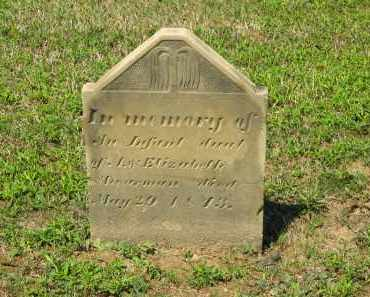 SHERMAN, ELIZABETH - Marion County, Ohio | ELIZABETH SHERMAN - Ohio Gravestone Photos