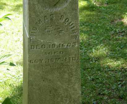 SQUIBB, THOMAS - Marion County, Ohio   THOMAS SQUIBB - Ohio Gravestone Photos