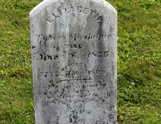 STINDULPER?(STINEHELFER), TOBIAS - Marion County, Ohio | TOBIAS STINDULPER?(STINEHELFER) - Ohio Gravestone Photos