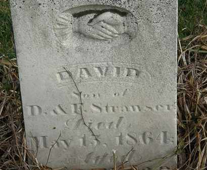 STRAWSER, DAVID - Marion County, Ohio | DAVID STRAWSER - Ohio Gravestone Photos