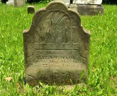 TAYLOR, ELIZA - Marion County, Ohio | ELIZA TAYLOR - Ohio Gravestone Photos