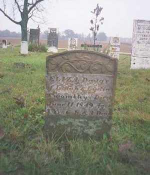 TWOMBLEY, ELIZA - Marion County, Ohio   ELIZA TWOMBLEY - Ohio Gravestone Photos
