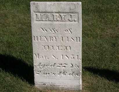 ULSH, HENRY - Marion County, Ohio | HENRY ULSH - Ohio Gravestone Photos