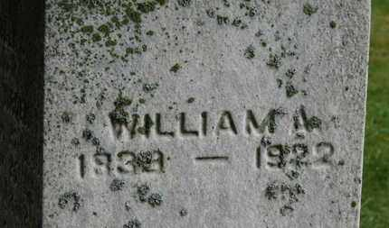 VIRDEN, WILLIAM A. - Marion County, Ohio | WILLIAM A. VIRDEN - Ohio Gravestone Photos