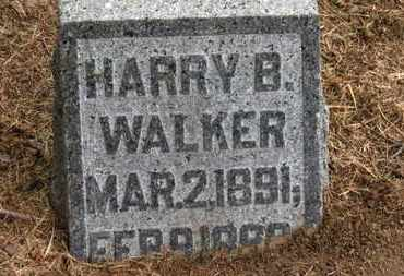 WALKER, HARRY B. - Marion County, Ohio | HARRY B. WALKER - Ohio Gravestone Photos