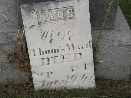 WARD, JANE - Marion County, Ohio | JANE WARD - Ohio Gravestone Photos