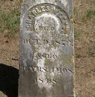 WEEKS, CHARLES - Marion County, Ohio | CHARLES WEEKS - Ohio Gravestone Photos