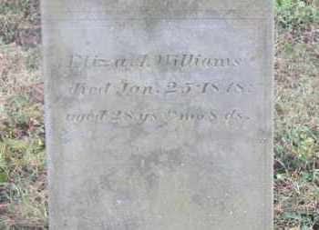 WILLIAMS, ELIZA A. - Marion County, Ohio | ELIZA A. WILLIAMS - Ohio Gravestone Photos