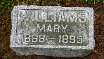 WILLIAMS, MARY - Marion County, Ohio | MARY WILLIAMS - Ohio Gravestone Photos