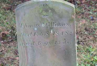 WILLIAMS, THOMAS - Marion County, Ohio | THOMAS WILLIAMS - Ohio Gravestone Photos