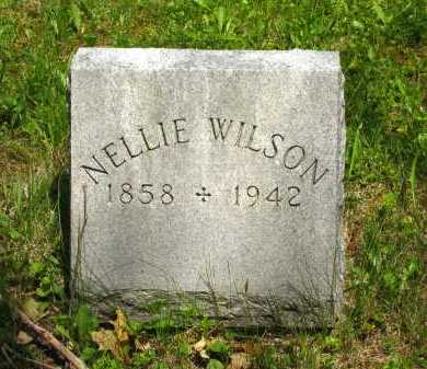 WILSON, NELLIE - Marion County, Ohio | NELLIE WILSON - Ohio Gravestone Photos