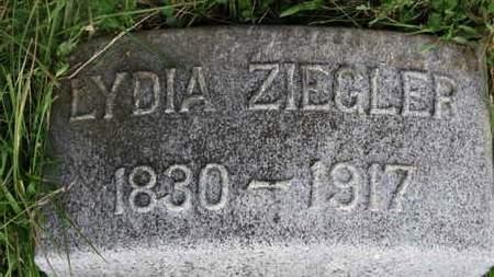 ZIEGLER, LYDIA - Marion County, Ohio | LYDIA ZIEGLER - Ohio Gravestone Photos