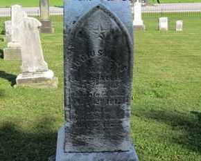 ALLIS, LUCIUS - Medina County, Ohio | LUCIUS ALLIS - Ohio Gravestone Photos