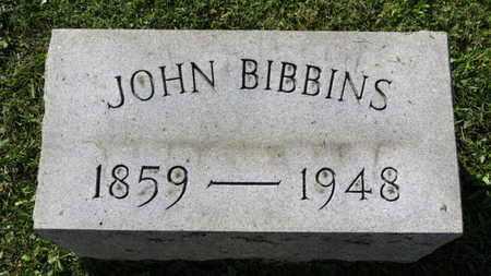 BIBBINS, JOHN - Medina County, Ohio | JOHN BIBBINS - Ohio Gravestone Photos