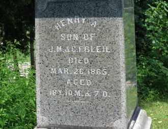 BLEIL, .M. - Medina County, Ohio | .M. BLEIL - Ohio Gravestone Photos