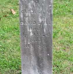 BRILL, CAROLINE V. - Medina County, Ohio | CAROLINE V. BRILL - Ohio Gravestone Photos