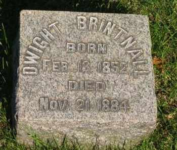 BRINTNALL, DWIGHT - Medina County, Ohio | DWIGHT BRINTNALL - Ohio Gravestone Photos