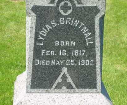 BRINTNALL, LYDIA S. - Medina County, Ohio | LYDIA S. BRINTNALL - Ohio Gravestone Photos
