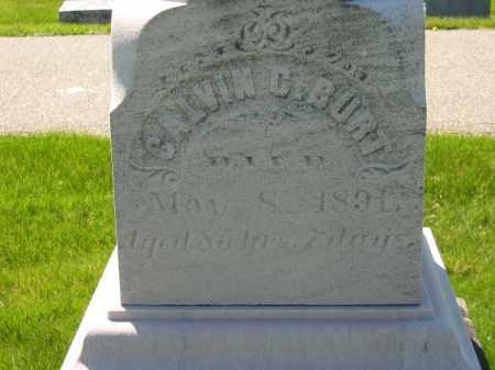BURT, CALVIN C. - Medina County, Ohio | CALVIN C. BURT - Ohio Gravestone Photos