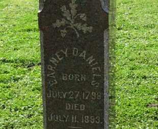 DANIELS, BARNEY - Medina County, Ohio | BARNEY DANIELS - Ohio Gravestone Photos