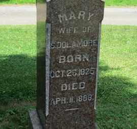 DOLAMORE, MARY - Medina County, Ohio | MARY DOLAMORE - Ohio Gravestone Photos