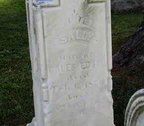 EDSON, SALLY - Medina County, Ohio | SALLY EDSON - Ohio Gravestone Photos