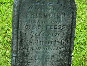 FEESS, FRIEDRICH - Medina County, Ohio | FRIEDRICH FEESS - Ohio Gravestone Photos