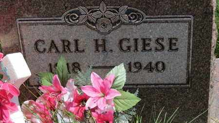 GIESE, CARL H. - Medina County, Ohio   CARL H. GIESE - Ohio Gravestone Photos