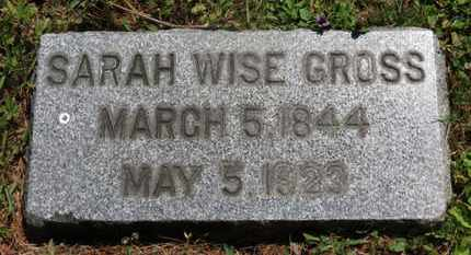 WISE GROSS, SARAH - Medina County, Ohio | SARAH WISE GROSS - Ohio Gravestone Photos